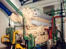 CHP Cogeneration Power Plants